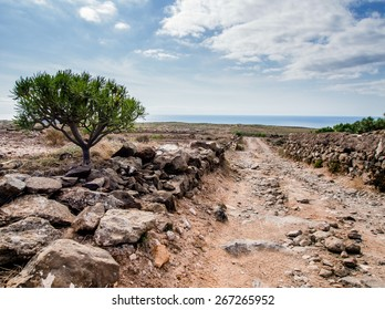 Picturesque landscape of Tenerife. Canary Islands. Spain