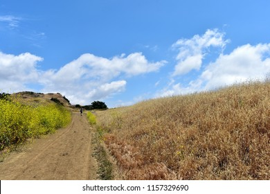 Picturesque landscape in Topanga Canyon. California.