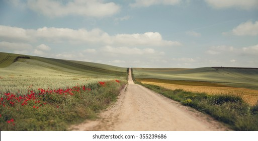 Picturesque landscape with wheat fields and red poppies. The pilgrimage route Camino de Santiago