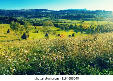 Picturesque lawns of Karpaty on Bucovina in Romania.