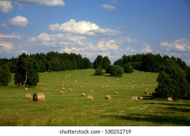 Picturesque meadow in the Czech Republic.