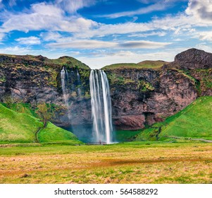 Picturesque morning view of Seljalandfoss Waterfall on Seljalandsa river. Colorful summer scene in Iceland, Europe. Artistic style post processed photo.