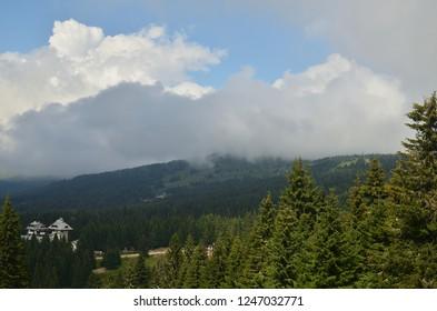 Picturesque mountain landscape in a cloud in summer - Kopaonik, Serbia