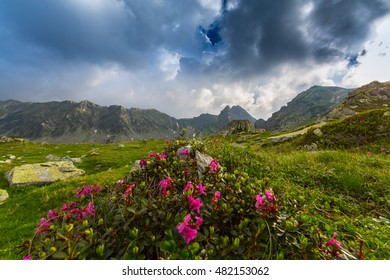 Picturesque mountain scenery in the Transylvanian Alps in summer