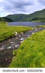 A picturesque mountain stream feeding into the head of Haweswater reservoir in Mardale valley, Cumbria, UK