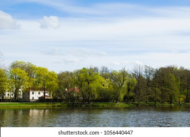 Picturesque park and lake at sunny day
