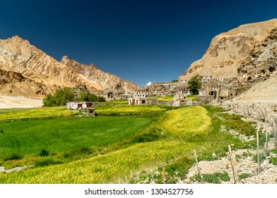 Picturesque remote village in the mountains of Ladakh, India