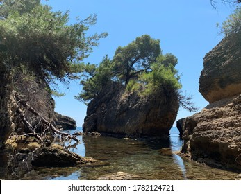 Picturesque rocks and coniferous trees on the Adriatic beach, Montenegro. Beautiful landscape of rocky beach.Amazing view on clear Adriatic sea. Scenic pine cliffs and pebble beach. Summer relaxation.