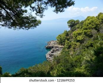 picturesque rocky coastline covered with dense forest and the blue sea Acquafredda in Basilicata Italy