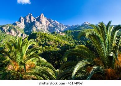 picturesque scene in Corsica