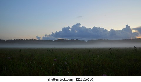 A picturesque summer sunset landscate in a field (meadow), covered with the thick fog or mist, with a huge dark rain clowd in the sky