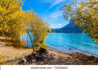 Picturesque turquoise Abraham Lake in a flood. Journey to the Golden Autumn in Rocky Mountains. The flooded coastal gold birchwoods. The concept of ecological and active tourism