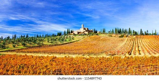 Picturesque  Tuscany - golden  vineywrds and castles.Castello Banfi - Il Borgo. Italy
