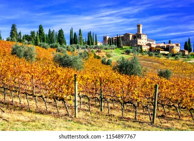 Picturesque  Tuscany - vineywrds and castles. Castello Banfi - Il Borgo.  Italy