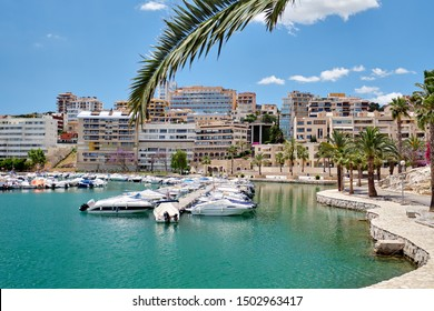 Picturesque view to marina in the Palma de Mallorca spanish resort city, green turquoise bay water, coastal charming houses, palm trees, sunny day. Balearic Islands, Spain