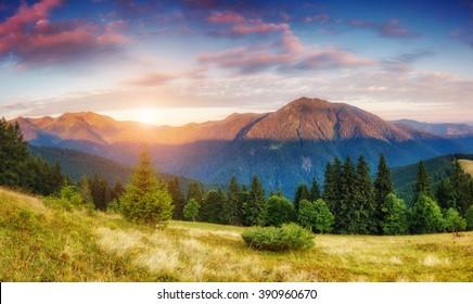 nature scene images stock photos vectors shutterstock