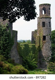 Picturesque view of an old stone castle covered in ivy and located in Cork, Ireland