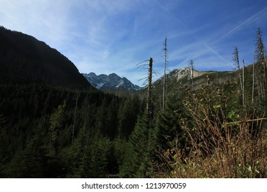 Picturesque view on the way to Morskie Oko Lake, the Tatra National Park/Poland - 10.06.2018. It is a national park located in the Tatra mountains in Tatra County, in the  Lesser Poland Voivodeship.