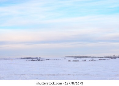 picturesque view of snow-covered forest on field at winter day