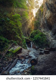 Picturesque view with warm sun rays in the Seven Stairs Canyon (Canionul Sapte Scari), in the Piatra Mare Mountains, Timisul de Jos, Brasov county, Transylvania region, Romania.