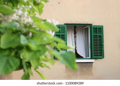 Picturesque window with green shutters and white curtains. Tree inn the front. Selective focus.