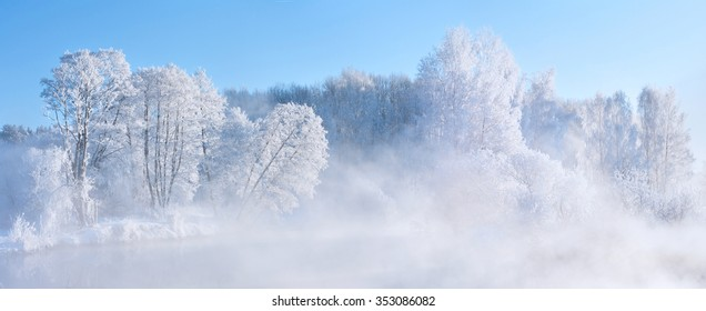 Picturesque winter landscape. Frosty white winter trees in front of the blue sky.