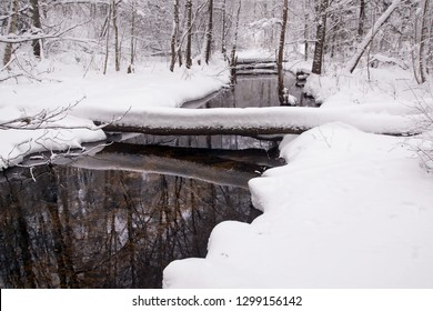 Picturesque winter landscape with a lake
