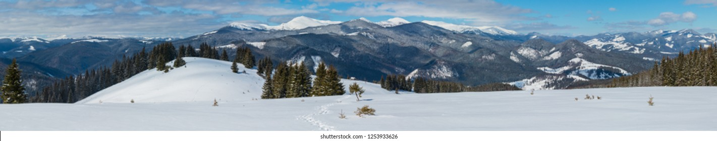 Picturesque winter mountain view from alpine path with footprint. Skupova mountain slope, Ukraine, view to Chornohora ridge and Pip Ivan mountain top with observatory building, Carpathian.