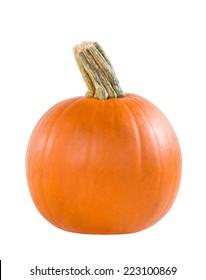 Pie pumpkin isolated on white