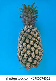 Pieapple on blue blackground. tropical fruit. Close up