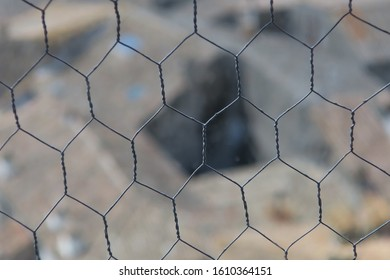 a piece of chicken wire, detail, with the focus on the foreground
