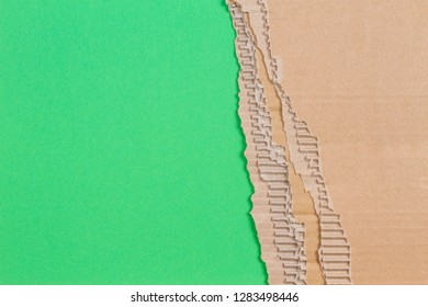 Piece of corrugated cardboard with torn paper edge on green background