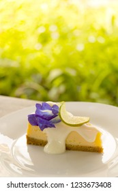 A piece of delicious lemon cheese pie in white plate on wooden table with green garden background.