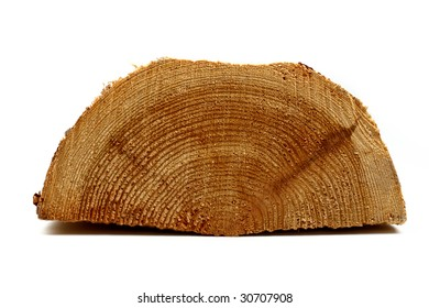 piece of log on white