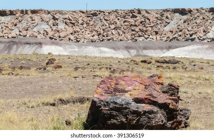 Piece of Petrified Wood in Petrified Forest National Park