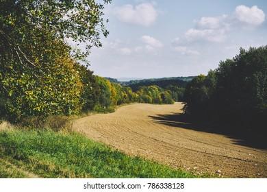 Piece of a stony field