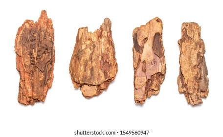A piece of tree bark is isolated on a white background.