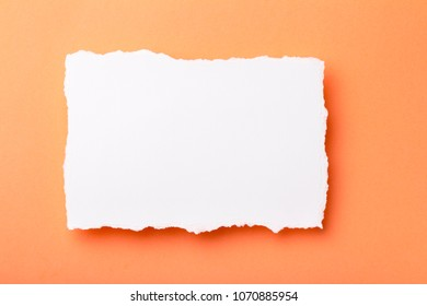 piece of white paper with torn edges on a colored background with a place for text, ,creative idea