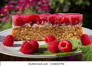 A piece of wholemeal raspberry cake on a porcelain plate. picnic in the sunny flower garden
