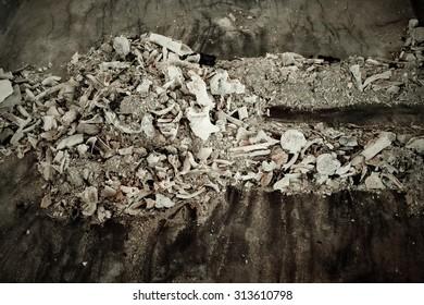 pieces of bones