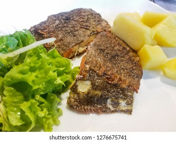 Pieces of fried brill fish (Scophthalmus rhombus) with lettuce and cooked potatoes on white porcelain dish