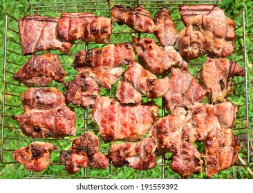 Pieces of grilled pork meat in sunlight against green grass background