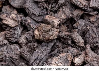 Pieces of lignite or brown coal from a mine