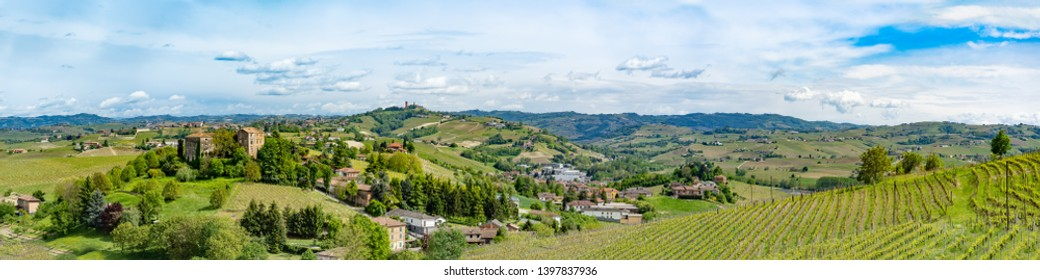 piedmont vineyards langhe monferrato region, wine tasting area. panoramic wide view