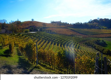 the Piedmontese Langhe in autumn with its vineyards and its rolling hills