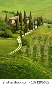 Pienza, Italy - April 24, 2018: Famous Podere Belvedere Villa Belvedere in spring season, in the heart of the Tuscany. Val d'Orcia.
