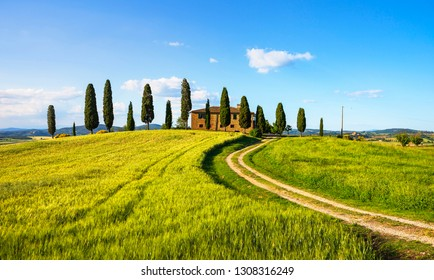 PIENZA, TUSCANY / ITALY - May 29, 2015: Iconic farmland I Cipressini, italian cypress trees and rural white road in spring. Located in Siena countryside.