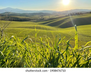 Pienza, Tuscany - January 20 2021:idyllic panorama of the lands of the Val D'orcia in the province of Siena on a sunny day in winter