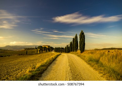 Pienza,Italy-September 2015:Tuscany Landscape,autumn field,lonely house in Tuscany