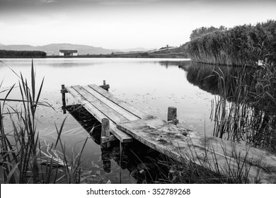pier and lake black and white photography